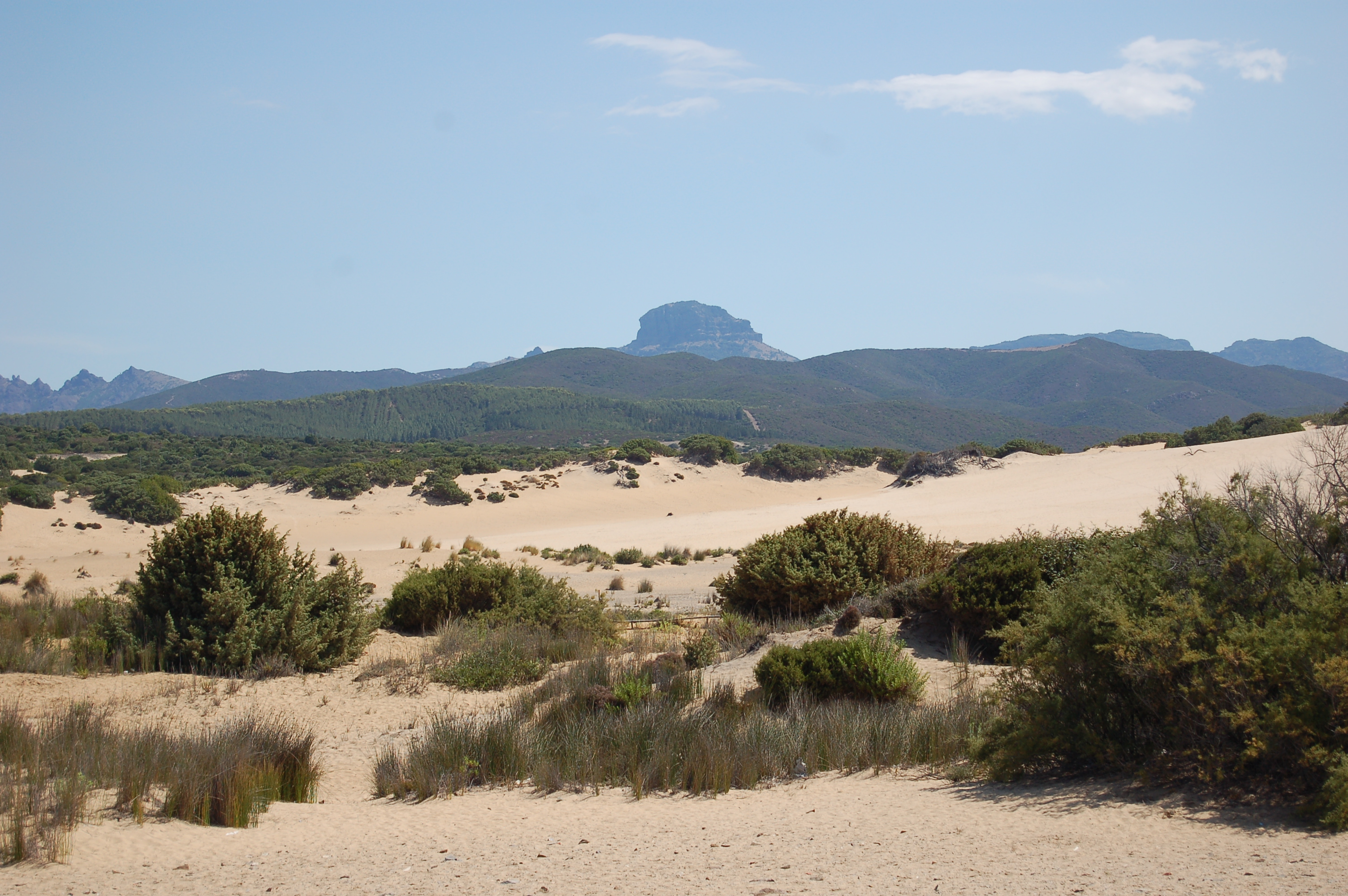 Le dune di Piscinas e, sullo sfondo, la sagoma del Monte Arcuentu